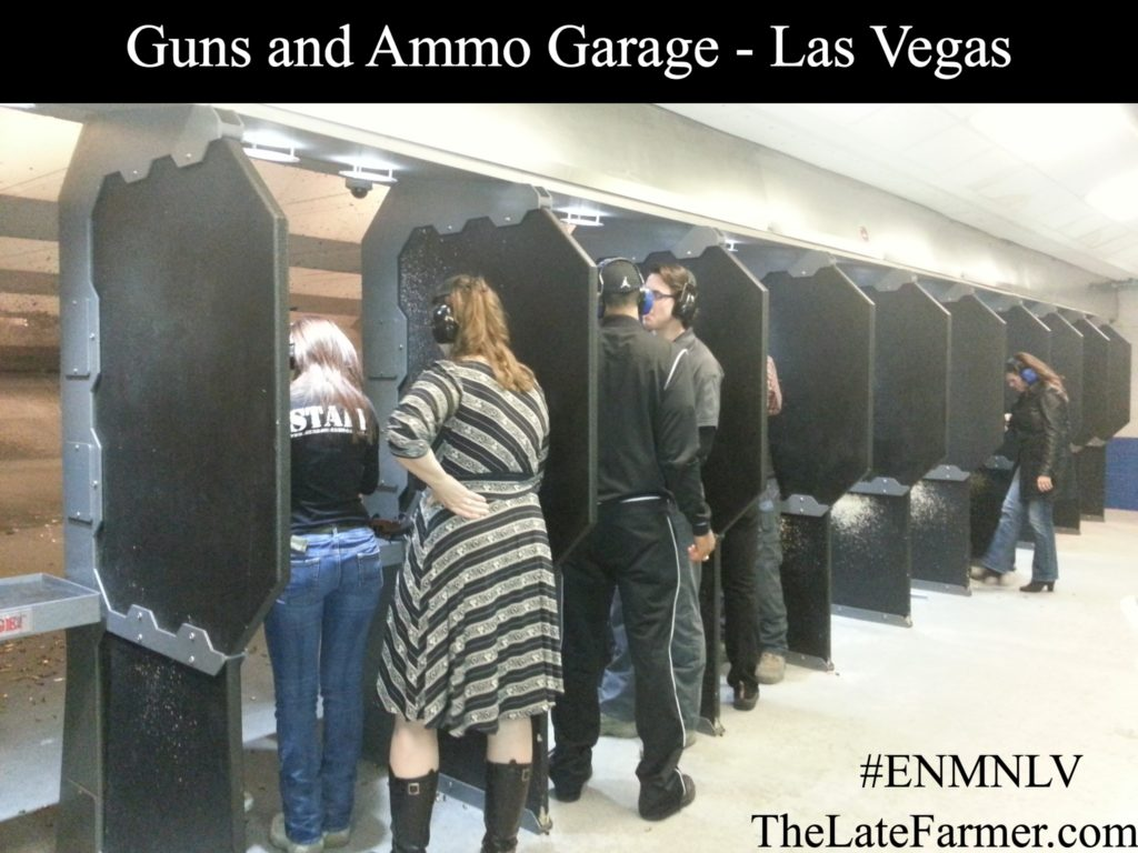 Guns and Ammo Garage - Range - TheLateFarmer.com