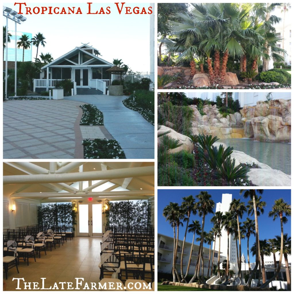 Tropicana Las Vegas - Weddings - TheLateFarmer.com