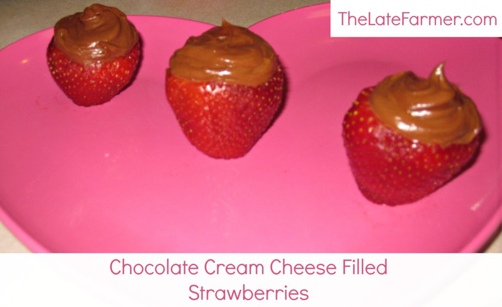 Chocolate Cream Cheese Filled Strawberries - TheLateFarmer.com