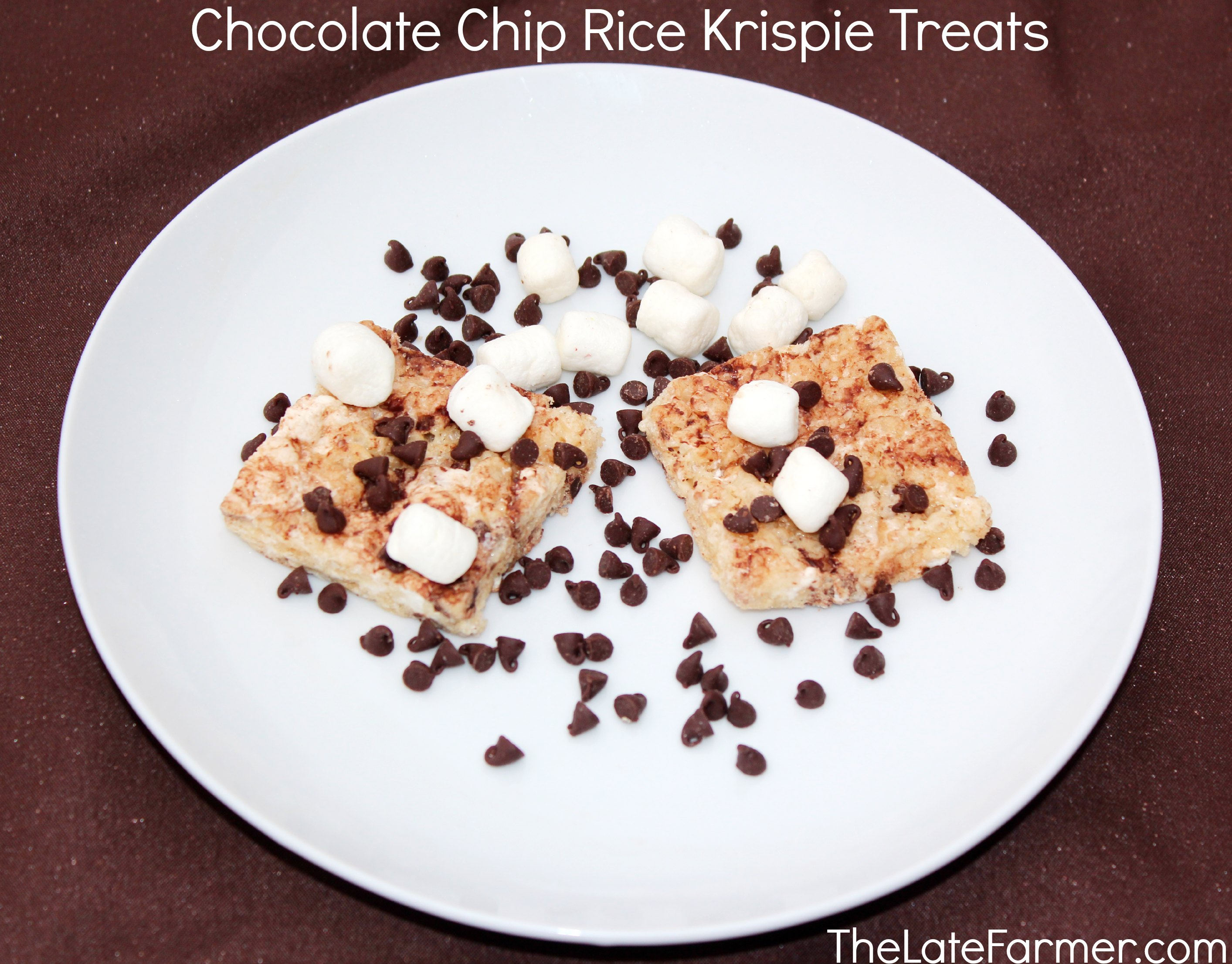 Chocolate Chip Rice Krispie Treats - TheLateFarmer.com