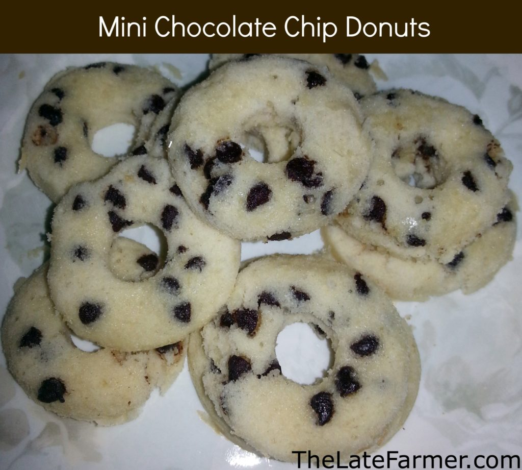Mini Chocolate Chip Donuts - TheLateFarmer.com